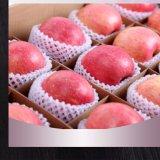 De plastic Appel van het Schuim EPE/Machine van de Extruder van de Dekking van het Netwerk van het Fruit van de Mango de Netto