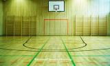 専門のビニールPVC木カラーと使用されるバスケットボールコートのためのプラスチックロールフロアーリング