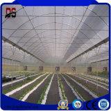 O Plástico filme Shet span único Farm Estufa com sistema Colling