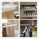 De beste Verkopende Garderobe van de Raad van de Melamine van de Manier Moderne met Garderobe wr-11 van de Hardware