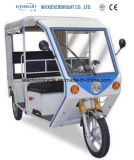 Populares 60V 1000W de coche eléctrico pasajero