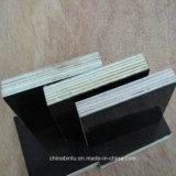 La película de la madera contrachapada de la melamina del precio de fábrica 18m m hizo frente al álamo de la madera contrachapada/a la madera contrachapada del abedul
