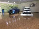 Zxauto de Bestelwagen van de Luxe van Lord Diesel Isuzu Vm Two-Wheel Aandrijving