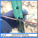 10FT clôture métallique T cloutés Post pour la vente