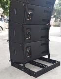 """Skytone neues passive Zeile Reihen-Lautsprecher-Kasten des Entwurfs-1X12 """""""