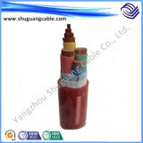 Fluorine Plastic Insulation and Sheath Electric Power Cable