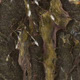 Dekorativer Film PVC-Marmorfarbe 2015 heiß