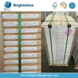 Papier-copie automatique de Brightshine