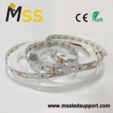 Lista de LED SMD2835 LED de 24VDC resistente al agua de la luz de las tiras LED flexibles
