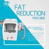 Cryolipolysis Cryo脂肪質の減少によってカスタマイズされるRFの脂肪質のフリーズ機械