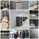 Машины для сушки фруктов|промышленных продуктов питания машины сушки|промышленных рыбных сушки машины
