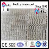 家禽の養鶏場のためのプラスチックスラットの床
