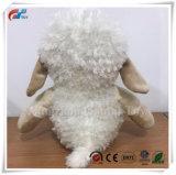 Tecla de cor creme Ovinos Cordeiro de pelúcia brinquedo bebê brinquedos para crianças