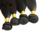 Pelo de seda brasileño del brasilen@o del pelo recto del pelo común al por mayor de la Virgen