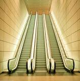 SRH Safe und Endurable Escalator
