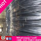 Métal recuit noir riche de la Chine Hebei de Wirehigh-Qualité de relation étroite clôturant le fil galvanisé/Gi