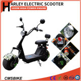 1000W脂肪はHarleyの電気スクーター都市ココヤシの電気スクーターを疲れさせる