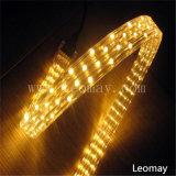 전문가는 3 편평한 철사 LED 밧줄 빛을 주문을 받아서 만든다