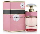 オマーンのための特別なデザインの香水