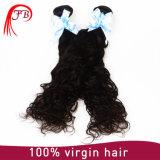 처리되지 않은 대중적인 Virgin 머리 연장 몽고 자연적인 파