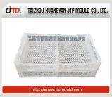 Moulage en plastique de caisse de nourriture