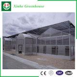 De Serres van de multi-Spanwijdte van het PC- Blad/van het Glas/van de Plastic Film voor Landbouw/Commercieel
