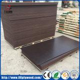Mano del material de construcción de la construcción del álamo de la madera dura segundo y nueva madera contrachapada