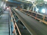 De op zwaar werk berekende Installatie van het Cement van de Transportband van de Riem