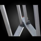 2 Teile Vielzweckfalz-flexible starke teleskopische Strichleiter-
