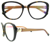 Marco óptico de Eyewear de la manera de Eyewear China