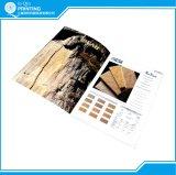 Cópias do folheto do compartimento do livro do catálogo para a venda