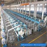 Rodillo tejido PP de la rafia de la fabricación de China