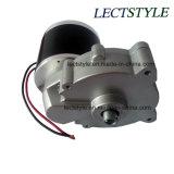 motor de la vespa del Uno mismo-Balance de la rueda de dc dos de 24V 350W