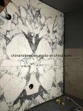 Azulejos de mármol blancos de China Bianco Arabascata para el suelo y la columna
