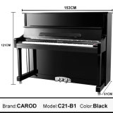 로고에 의하여 상표가 붙는 121cm 수형 피아노