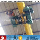 Élévateur électrique de construction de grue lourde de l'élévateur 5t