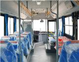 Bus van de Consumptie van de Brandstof van de Bussen van de Bus van de Reis van de Zetel van pvc de Rubber Lage