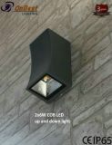 Nuevo y elegante de la luz de LED de 2X6W LED CREE COB en IP65