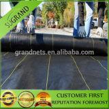 Nueva estera de Weed del negro de la Virgen del 100% con la Línea Verde