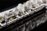 Профессиональные флейты /серебристые головки никель серебристый корпус /B ноги