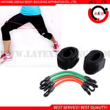 Tube en caoutchouc latex, poids de la jambe les bandes de vitesses pour les exercices de la jambe de Taekwondo
