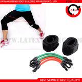 Tubo di gomma del lattice, fasce di velocità del peso del piedino per le esercitazioni di piedino del Taekwondo