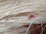 Chaircane를 위한 자연적인 고리버들 세공, 가구를 위한 니트 고리버들 세공