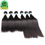 Het natuurlijke Haar van het Haar van de Kleur Onverwerkte Dubbele Weft