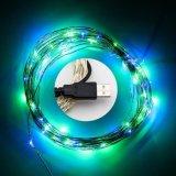 정원 훈장 구리 철사 2m 20LEDs 10m 100LEDs USB 끈 빛