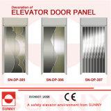 Str.-Str. Etching Door Panel für Elevator Cabin Decoration (SN-DP-385)