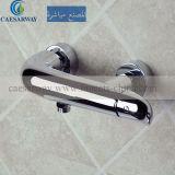 Robinet de douche élégant avec la CE a approuvé pour la salle de bains