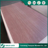 La calidad estupenda 18m m Okoume hizo frente a la madera contrachapada de la decoración del grado de Bb/Bb