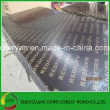 フェノールの接着剤の堅材のコア黒のフィルムの表面合板