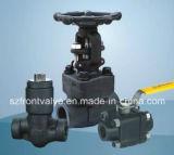 Valvole a saracinesca d'acciaio forgiate dell'interruttore o di Fnpt